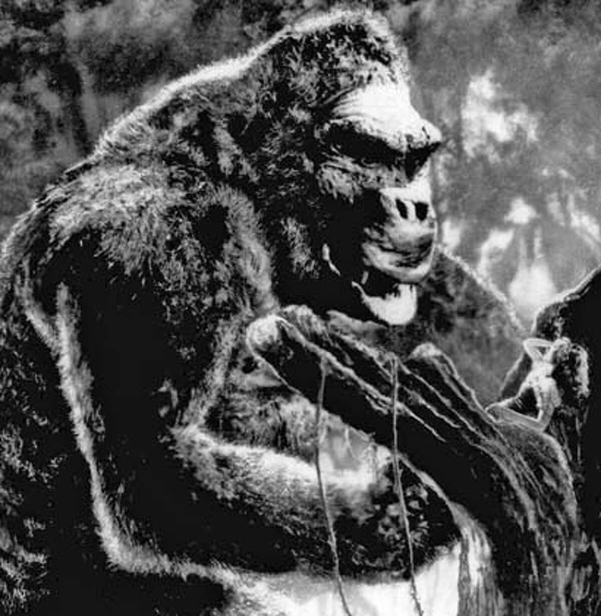 """King Kong views actress Fay Wray on a limb of a giant tree in a scene from the classic 1933 film """"King Kong."""" Wray, 96, died Sunday, Aug.8, 2004, at her Manhattan apartment, said Rick McKay, a friend and director of the last film she appeared in.(AP Photo)"""