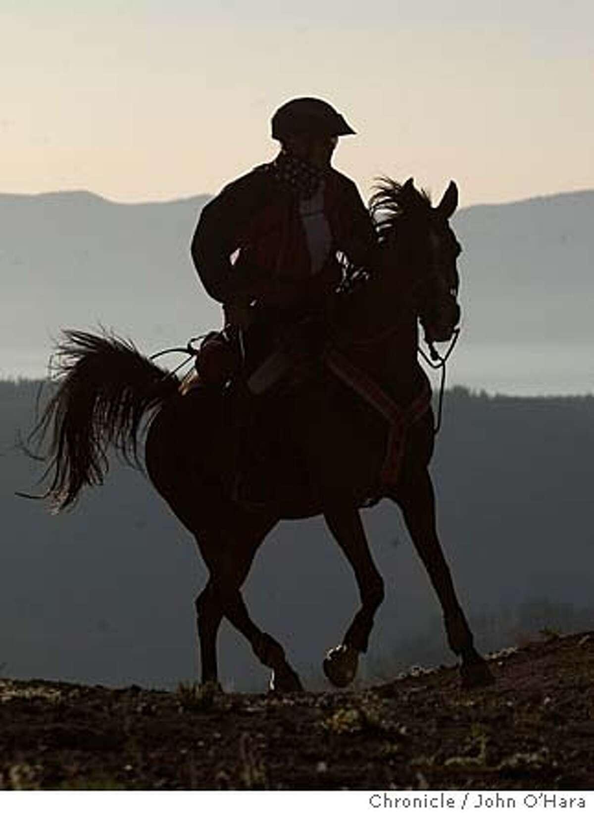 #222, Stephen Rojek, South Woodstock, VT. horse