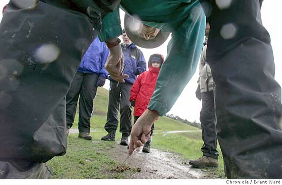 trackers083_ward.jpg  Docent Paul Vadopalas leaned over as he examined some droppings probably from a coyote. In background is six year old Oliver Hart.  The Midpeninsula Open Space District runs an active program of winter trail outings. On this outing, docents located animal tracks in the rain, inspiring the notion of tracking animals. Photos were taken west of Palo Alto just off Skyline Blvd.  Brant Ward 1/10/05 Photo: Brant Ward