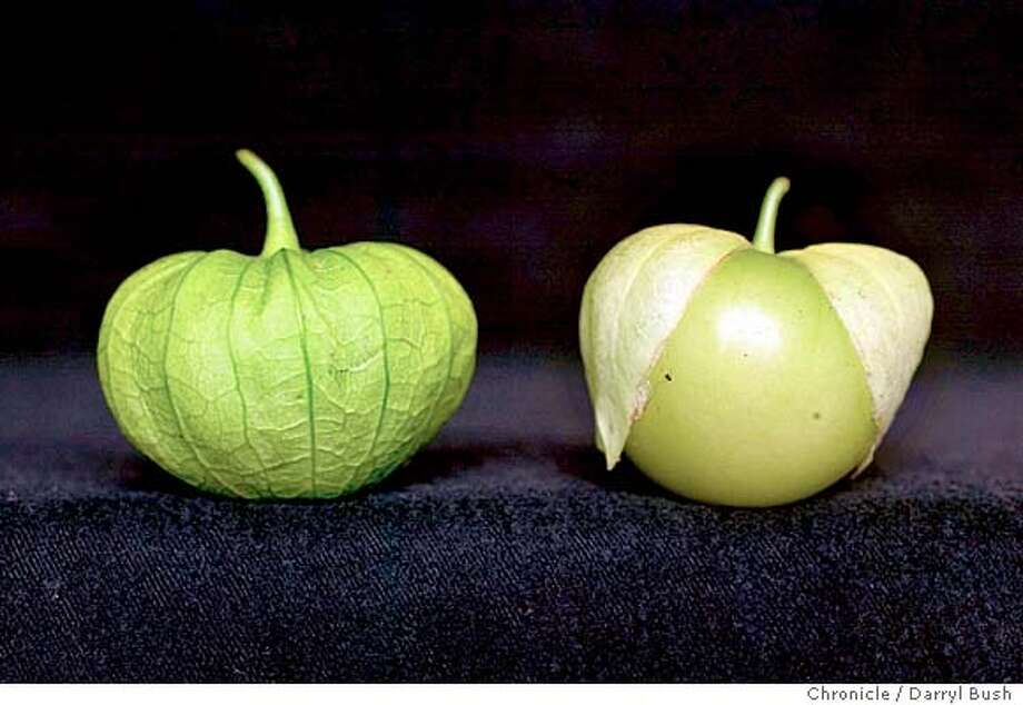 tomatillos for Home & Garden page.  7/21/04 in San Francisco  Darryl Bush / The Chronicle Photo: Darryl Bush