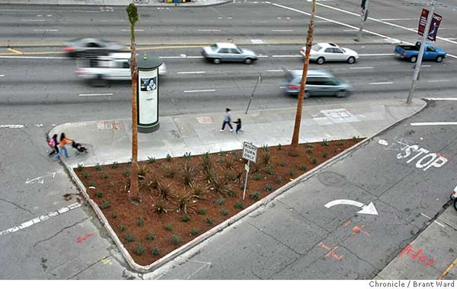 The traffic island at South Van Ness Avenue and 12th Streeet now has new landscaping and two large palm trees.  In December 2003, the Chronicle ran a story about a group of homeless people who lived and panhandled near a traffic island at South Van Ness Avenue and 12th Street. a year later there have been few improvements in their lives, but the traffic island looks a whole lot better. Brant Ward 12/8/04 Photo: Brant Ward