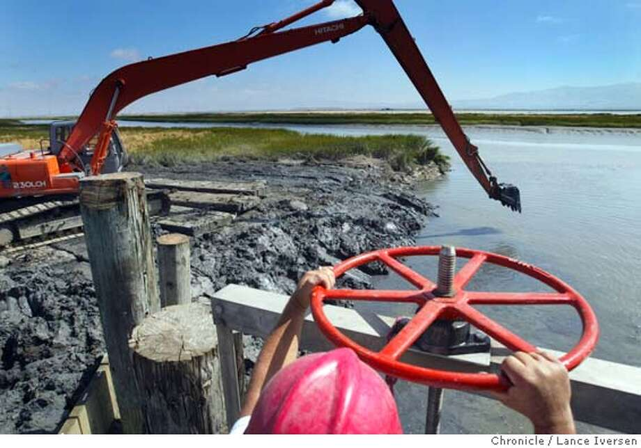 SALTPONDS235_LI.JPG Terry Lewis project foreman for Cargill Salt, holds onto one of four wheels that will let water pass between the ponds and Guadalupe Slough as work continues to clean out the passage between the two. The U.S. Fish and Wildlife Service is opening 4,000 acres of the old Cargill Salt ponds to bay tides, the first step in returning thousands of acres of former commercial salt works to wetlands around the San Francisco Bay. Wildlife biologists expect hordes of terns, ruddy ducks and pelicans to start feeding on the little fish and shellfish that will wash into the ponds through opened tide gates. By Lance Iversen/San Francisco Chronicle Photo: Lance Iversen