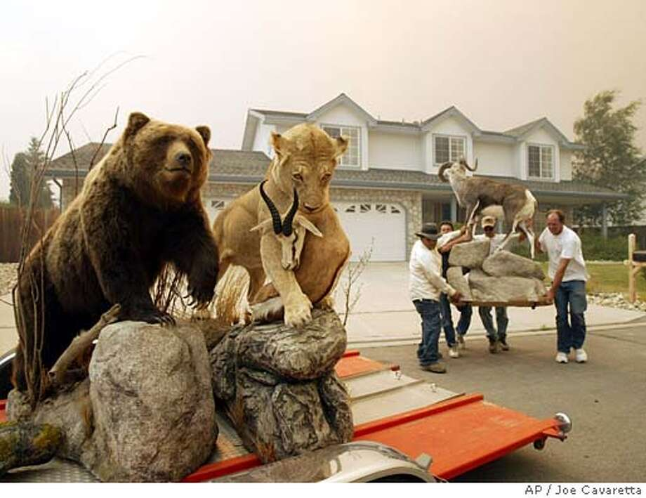 As the Waterfall fire approaches, neighbors help evacuate the residence of Sean Richards in Carson City, Nev., after making a water drop, Thursday, July 15, 2004. The fire jumped a containment line and more than 100 homes were evacuated. (AP Photo/Joe Cavaretta) Photo: JOE CAVARETTA