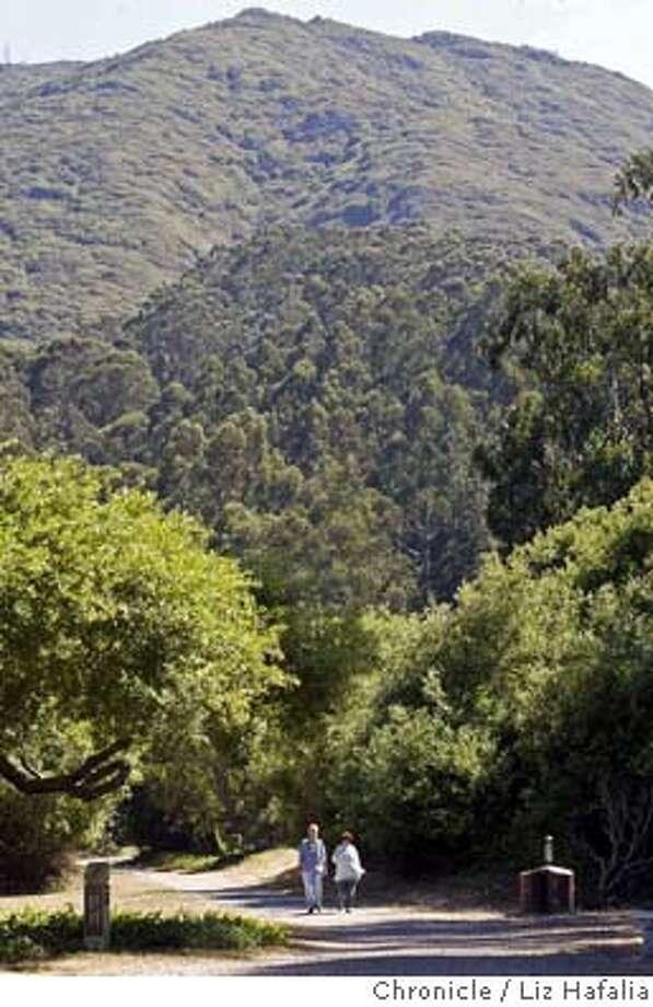 The Old Trout Farm trail of San Pedro Valley. Shot on 7/14/04 in San Bruno. LIZ HAFALIA / The Chronicle Photo: LIZ HAFALIA