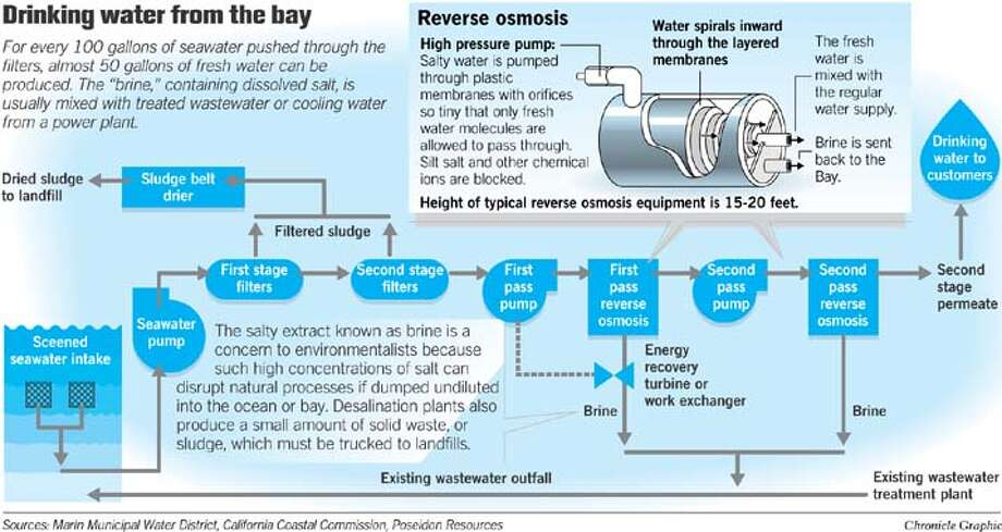 Drinking Water from the Bay. Chronicle Graphic by John Blanchard