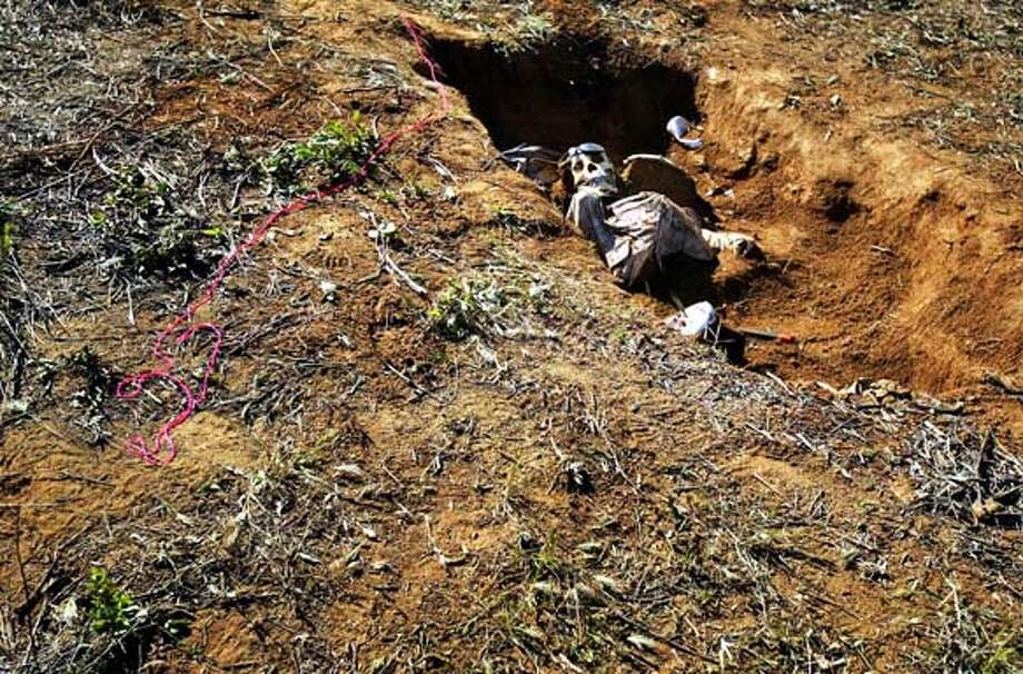 UNEARTHED: A plastic skeleton as homicide victim. Damon Winter -- - 080875.ME.0421.coroner - A partially uncoverd grave reveals a plastic skeleton dressed as a homocide victim at the Los Angeles County Department of Coroner Special Operations Response Team's Skeletal recovery Workshop held on the grounds of Descanso Detention Facility outside of San Diego. The workshop organizers created multiple simulated grave sites over three months ago in the wooded fields around the detention facility. Teams of students, mostly from area law enforcement agencies, worked to discover the graves and then unearth the evidence and document the crime scene. The Special Operations Response Team is and elite organization which has participated in the investigations of high profile cases like the Santa Monica farmer's market crash and well known plane crashes in the area. Photo: Damon Winter