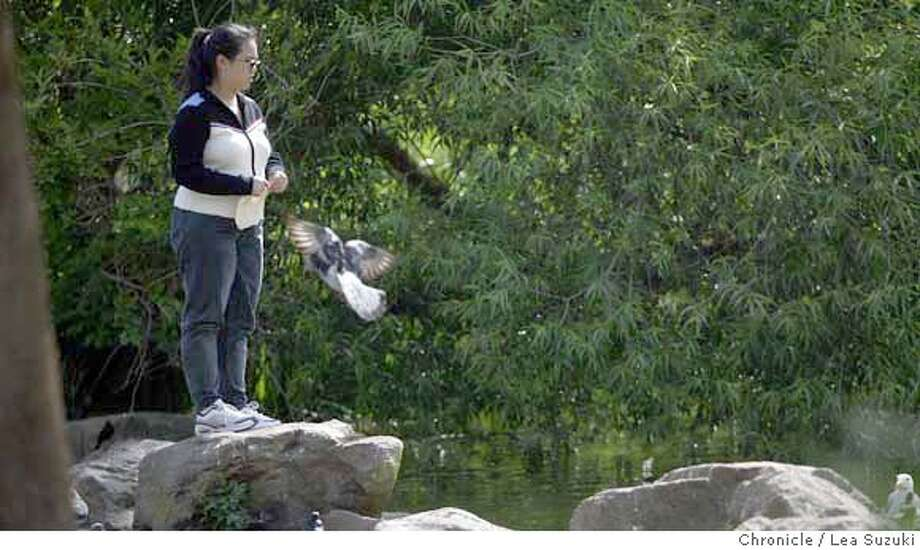 Standing atop a rock, Pauline Louie tears a tortilla and feeds it to a group of birds at Stow Lake in Golden Gate Park. Photo taken on 6/14/04 in San Francisco, CA.  Lea Suzuki/ San Francisco Chronicle Photo: Lea Suzuki