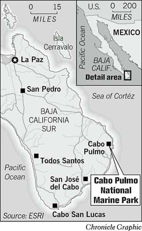 Cabo Pulmo. Chronicle Graphic Photo: John Blanchard
