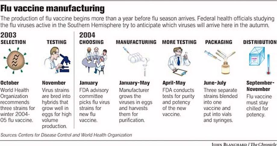 Flu Vaccine Manufacturing. Chronicle graphic by John Blanchard Photo: John Blanchard