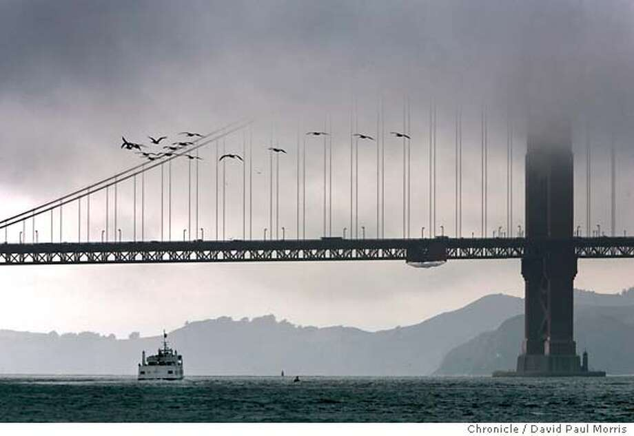 San Francisco, Ca October 4, 2004: A ferry takes tourists out under the Golden Gate Bridge as the fog and cold weather roll in through the gate. Photograph by David Paul Morris/The Chronicle Metro#Metro#Chronicle#10/6/2004#ALL#5star##0422395509 Photo: David Paul Morris