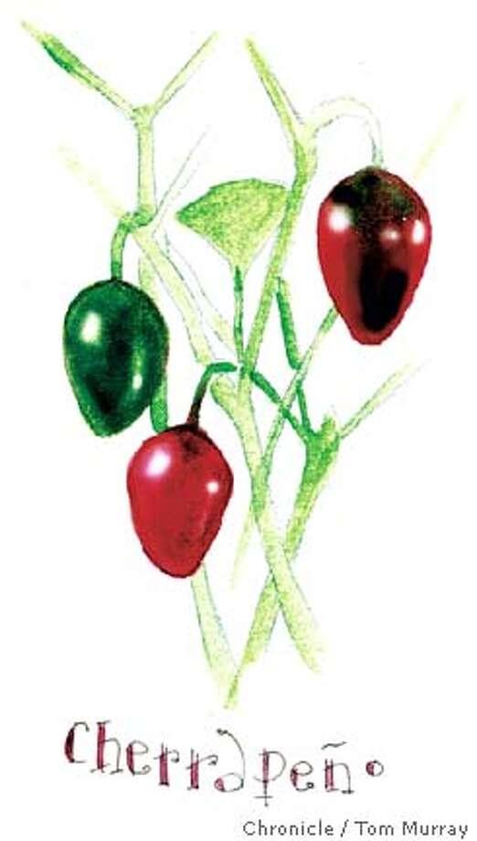 cherrapeno peppers Photo: Tom Murray