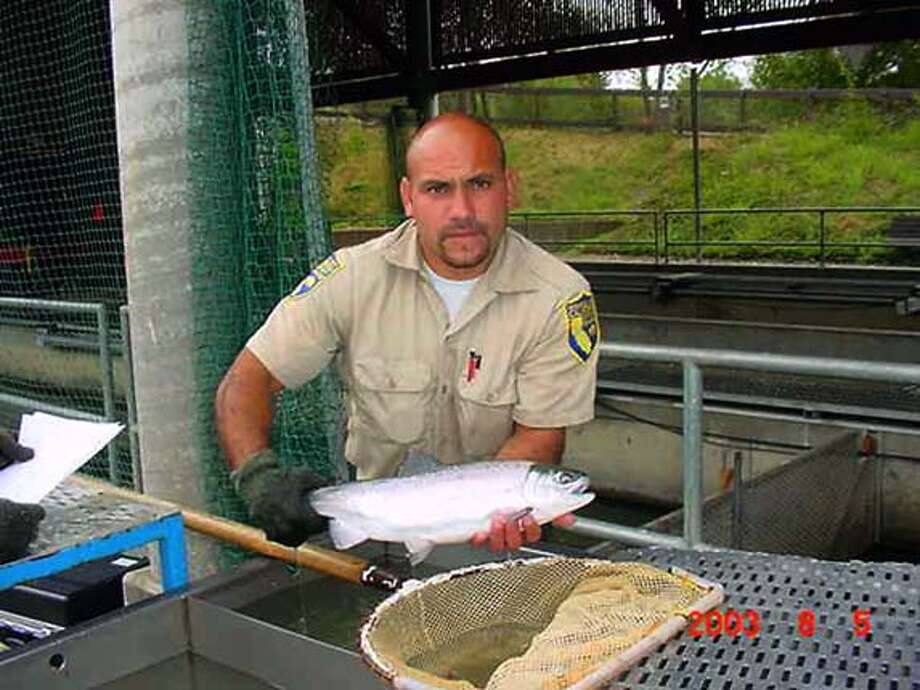 01coho: slug shud be: caption: Fish and Wildlife Technician Danny Garcia is holding a coho. This fish is 2 and � years old and is also part of the coho recovery effort on the Russian River.