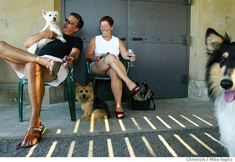 """Michael Lorella and Rose Lorella of San Francisco visit with the dogs during """"Dog Day Afternoon."""" (left-rt) Mia, Sho and Shelby.  Stryker Sanoma Winery hosted an event called """"Dog Day Afternoon."""" Stryker is part of a handfull of dog friendly wineries in California. MIKE KEPKA/The Chronicle Photo: MIKE KEPKA"""