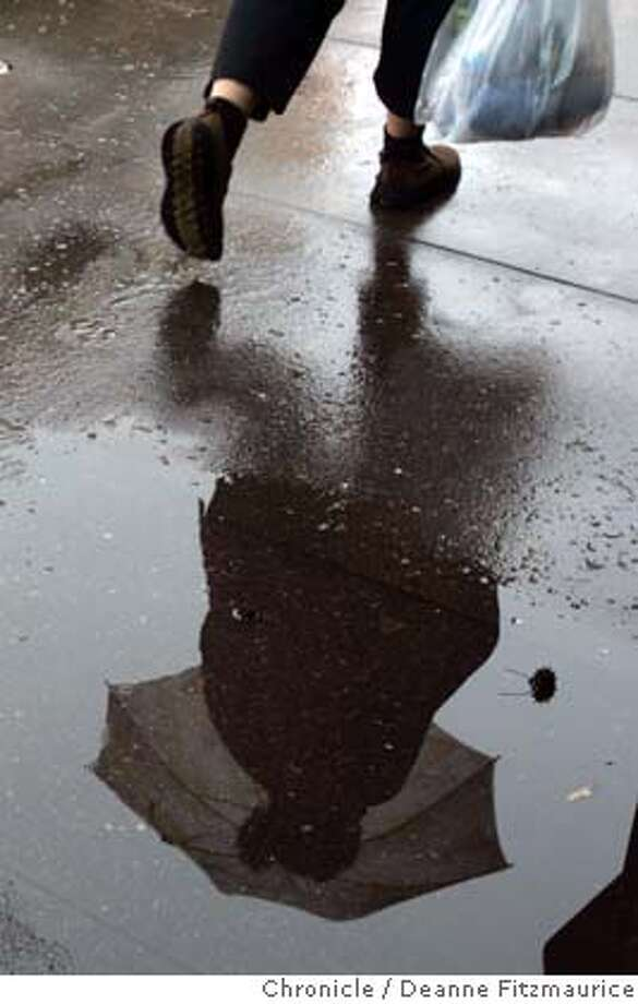 weather_126_df.JPG  People with umbrellas are reflected in a puddle as they walk along 4th Street in San Rafael in a light rain.  Deanne Fitzmaurice / The Chronicle Photo: Deanne Fitzmaurice
