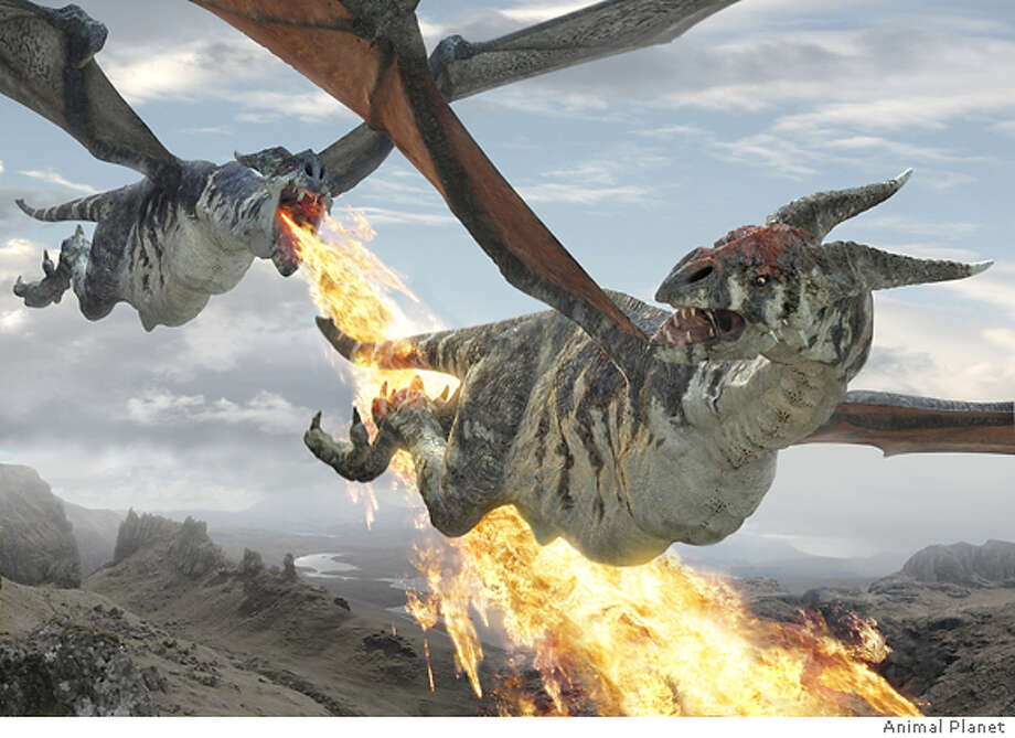 GOODMAN18 DRAGONS MADE REAL Description: The dog fight. Credit: Animal Planet