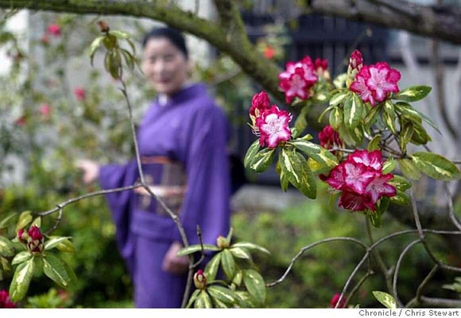 Event on 2/16/05 in Richmond.  Soho Sakai creates a modern Ikebana flower arrangement in her Richmond home.  Chris Stewart / Chronicle Photo: Chris Stewart