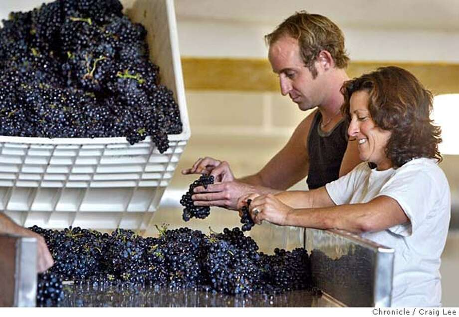 Jesse Pearson and Barbara Gratta, both of San Francisco, sort Zinfandel grapes at the Crushpad facility, where customers can be as hands-off or hands-on as they like. Chronicle photo by Darryl Bush