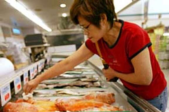 A woman shops for cod at Ranch 99 in Fremont. She declined to give her name but said the fish was for soup and that she was from the Philippines  CHINATOWN TYPE COMMUNITIES IN THE EAST BAY SUBURBS.  Event on 8/25/04 in Fremont. S.F. Chronicle Photo: Mark Costantini