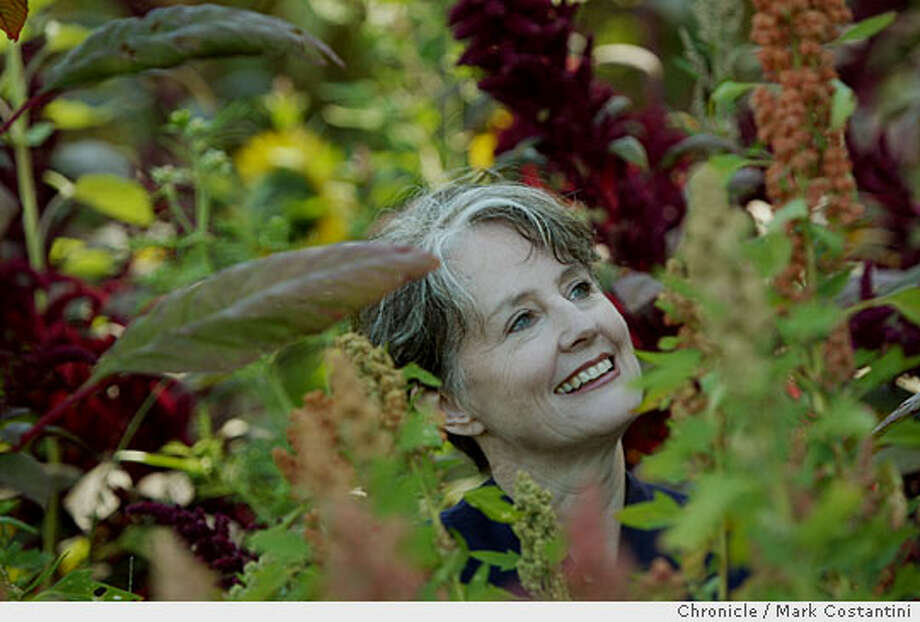 Chez Panisse founder Alice Waters has backed the project with $3.8 million rom her foundation. Chronicle photo by Mark Costantini