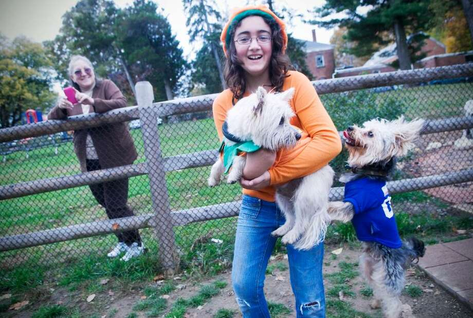 Jenny Matute holds Shawn, a Cairn Terrier dressed as a pumpkin, as Ecko, a Morkie dressed as a Giants football player, tries to jump up as dog owners and their Halloween costume clad pups attend a party at the Dog Friends of Stamford Dog Park in Stamford, Conn. on Friday, October 30, 2009 Photo: Kathleen O'Rourke / Stamford Advocate