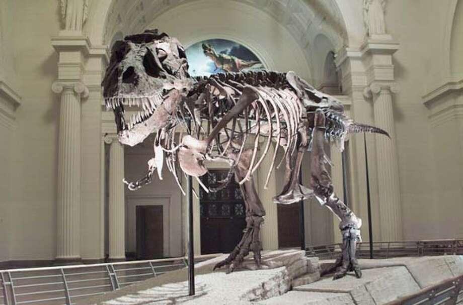 T-rex DINOSAUR12 (metro/mainnews) by perlman HANDOUT