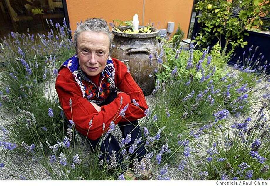 Topher Delaney surrounds herself in the lavender patch in the garden.. Garden designed by landscape architect Topher Delaney at the Avon Breast Cancer Center at SF General Hospital in San Francisco on 7/29/04. PAUL CHINN/The Chronicle Photo: PAUL CHINN