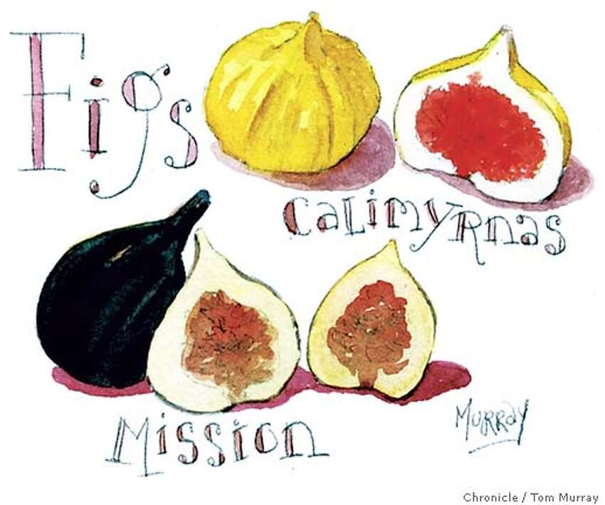 Figs. Chronicle illustration by Tom Murray