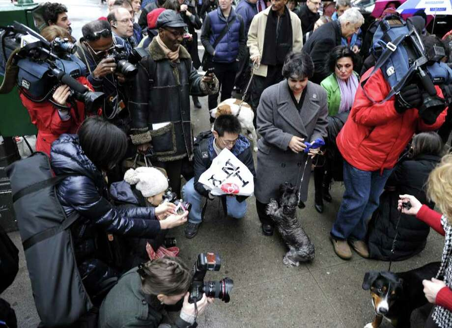 The press surround  new breeds of dogs as they arrive in New York January 26, 2012 for a press conference about the upcoming 136th annual Westminster Kennel Club Dog Show to take place at Madison Square Garden. Photo: TIMOTHY A. CLARY, AFP/Getty Images / AFP