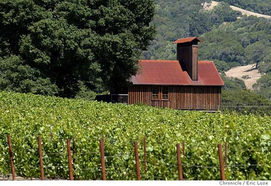 anderson08_080_el.JPG  Goldeneye Winery in the Anderson Valley, Pinot Noir  Eric Luse / The Chronicle Photo: Eric Luse