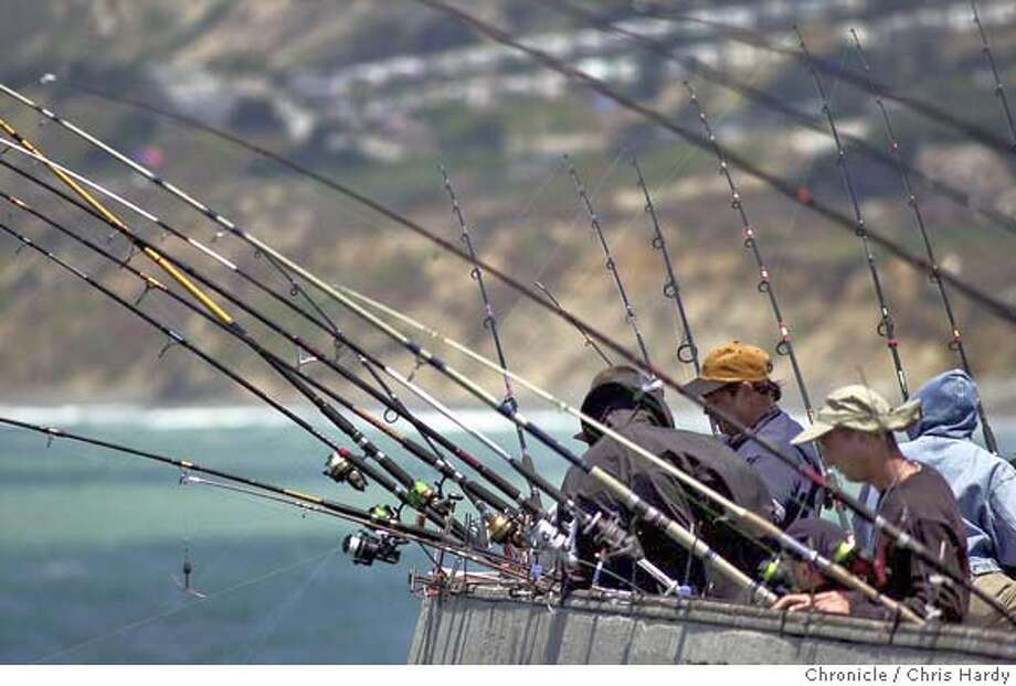 A day late and a line short sfgate for Pacifica pier fishing report