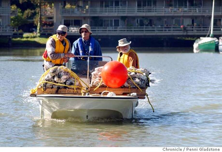 Steering boat into Richardson bay is Mike McMahon former SFSUprof. and biologist in center, at left is volunteer Bob Drude and volunteer, Richard Jacobs at rt. They will plant bay with oyster shells to see if native oyster larvae will take up residence inTiburon.  on 5/30/04 in Tiburon, CA.  must credit photo by Penni Gladstone/ Photo: Penni Gladstone