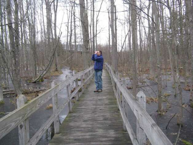 The Cornell Lab of Ornithology's Sapsucker Woods sanctuary offers several miles of walking trails through a variety of habitats. (Gillian Scott/Times Union)