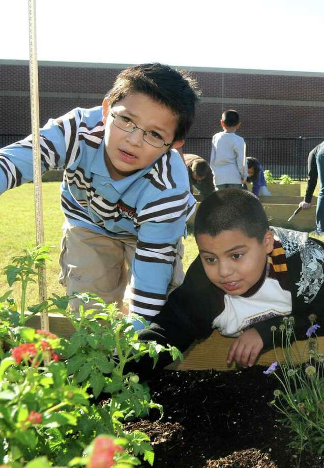 One sure way to get kids to eat their veggies: Let them grow their own. Photo: Jerry Baker, Freelance / Freelance