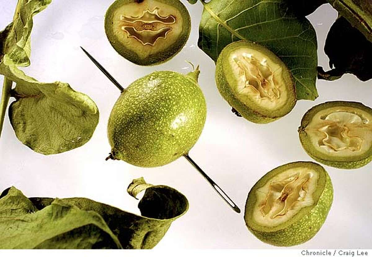 Photo of a green walnut with a needle stuck through it's center and next to it are some green walnuts cut in half to show the meat. This is for a story to illustrate wines and liqueurs made from green walnuts. Event on 5/17/04 in San Francisco. Craig Lee / The Chronicle