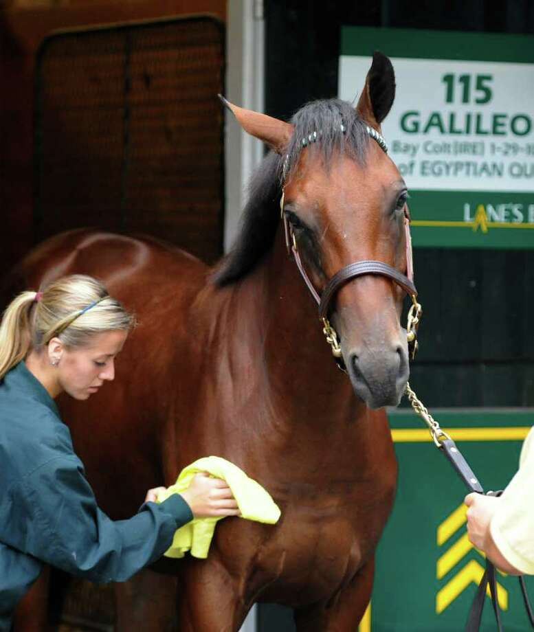 A sales showperson prepares Hip #115, a Galileo colt for inspection at the Lane's End consignment at the Fasig-Tipton Sales yards for the final of two nights of thoroughbred yearling sales in Saratoga Springs, N.Y. Aug. 9, 2011.  Last evenings sales were up in all categories totally opposite of the stock market performance which had cast a pall over the sale.      (Skip Dickstein / Times Union) Photo: SKIP DICKSTEIN