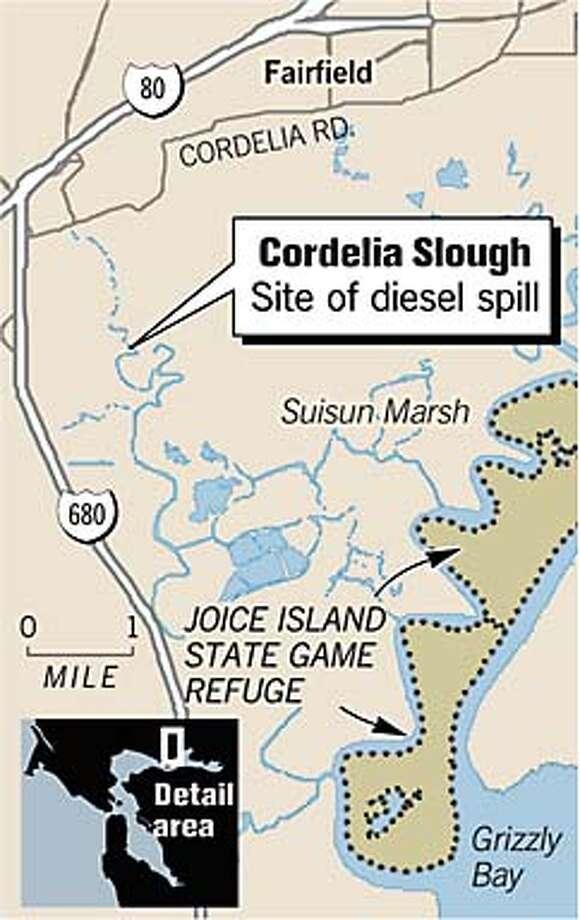 Diesel Fuel Spill. Chronicle Graphic Photo: Joe Shoulak