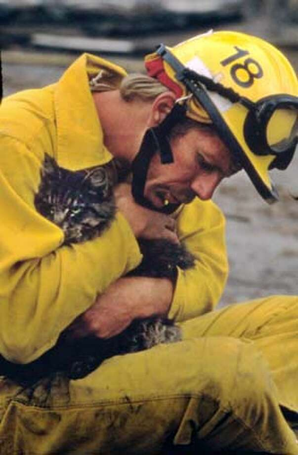A fireman cradles a cat he has just coaxed from a scorched tree at the 1991 East Bay hills fire. Photo by Maggie Hallahan