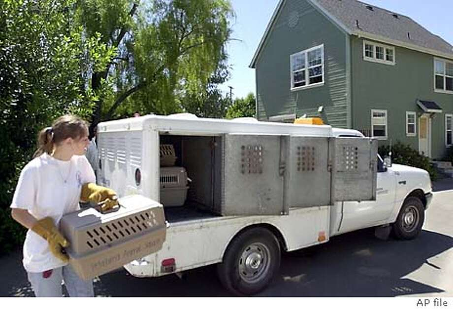 Animal service worker Shohana Brown carries a caged cat to an animal control truck, Wednesday, May 23, 2001, taken from this home in Petalmuma, Calif. A wealthy San Francisco woman was arrested Tuesday, May 22, 2001, after authorities discovered filthy conditions at the two-story home she had purchased exclusively for more than 150 cats to live in. Petaluma authorities say Marilyn Barletta, 55, never lived in the two-story residential district house. She merely drove north from her San Francisco home occasionally to feed the felines. (AP Photo/The Press Democrat, Chad Surmick) Photo: CHAD SURMICK