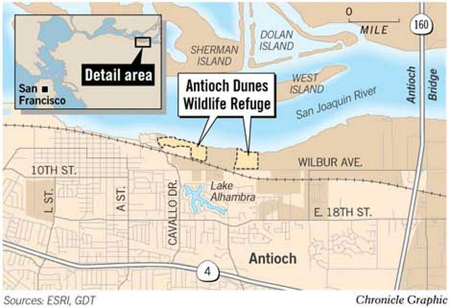 Antioch Dunes Wildlife Refuge. Chronicle Graphic