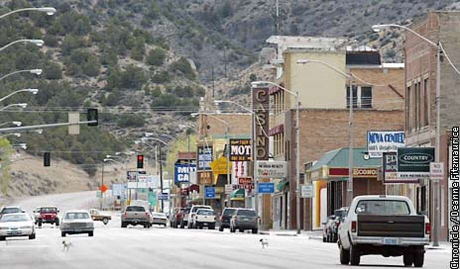 ELY1-C-09MAY02-MN-DF  Two puppies run across the road in downtown Ely, Nevada.  CHRONICLE PHOTO BY DEANNE FITZMAURICE