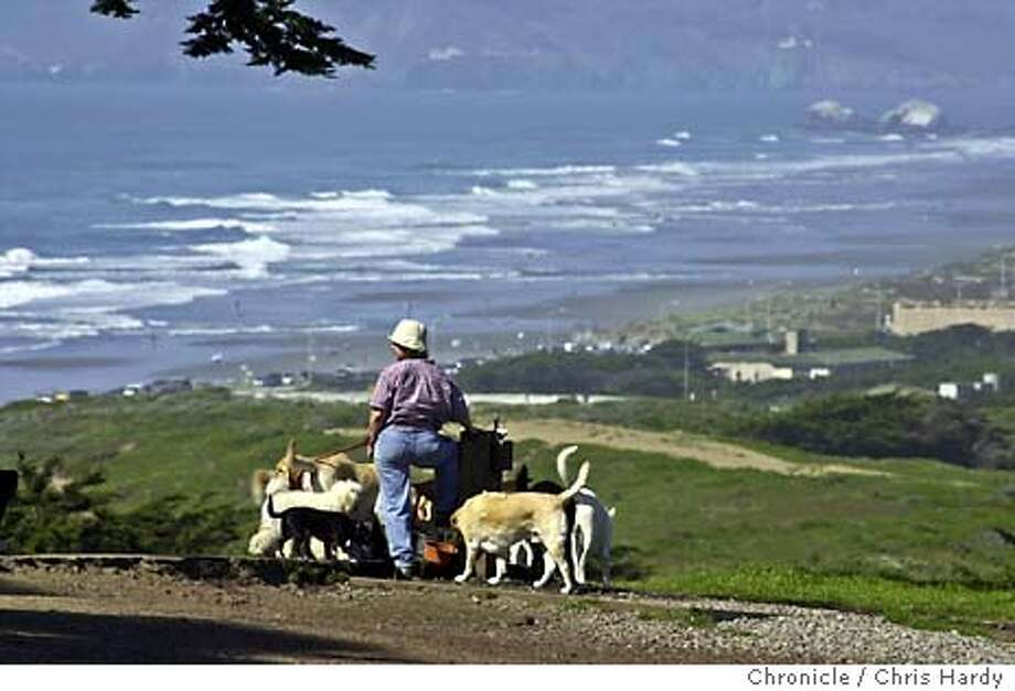 Dogwalker Michelle, no aparent last name, walks a bunch of dogs on a nice day at Fort Funston, even though a dog, not one of hers, fell over the edge earlier in the day  Event on 3/15/04 in San Francisco.  Chris Hardy / San Francisco Chronicle Photo: Chris Hardy