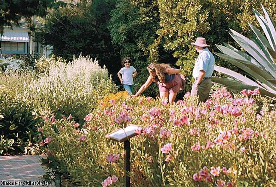 Visitors enjoy the many flowers at the Luther Burbank Home and Gardens in downtown Santa Rosa. Chronicle photo by Gina Gayle
