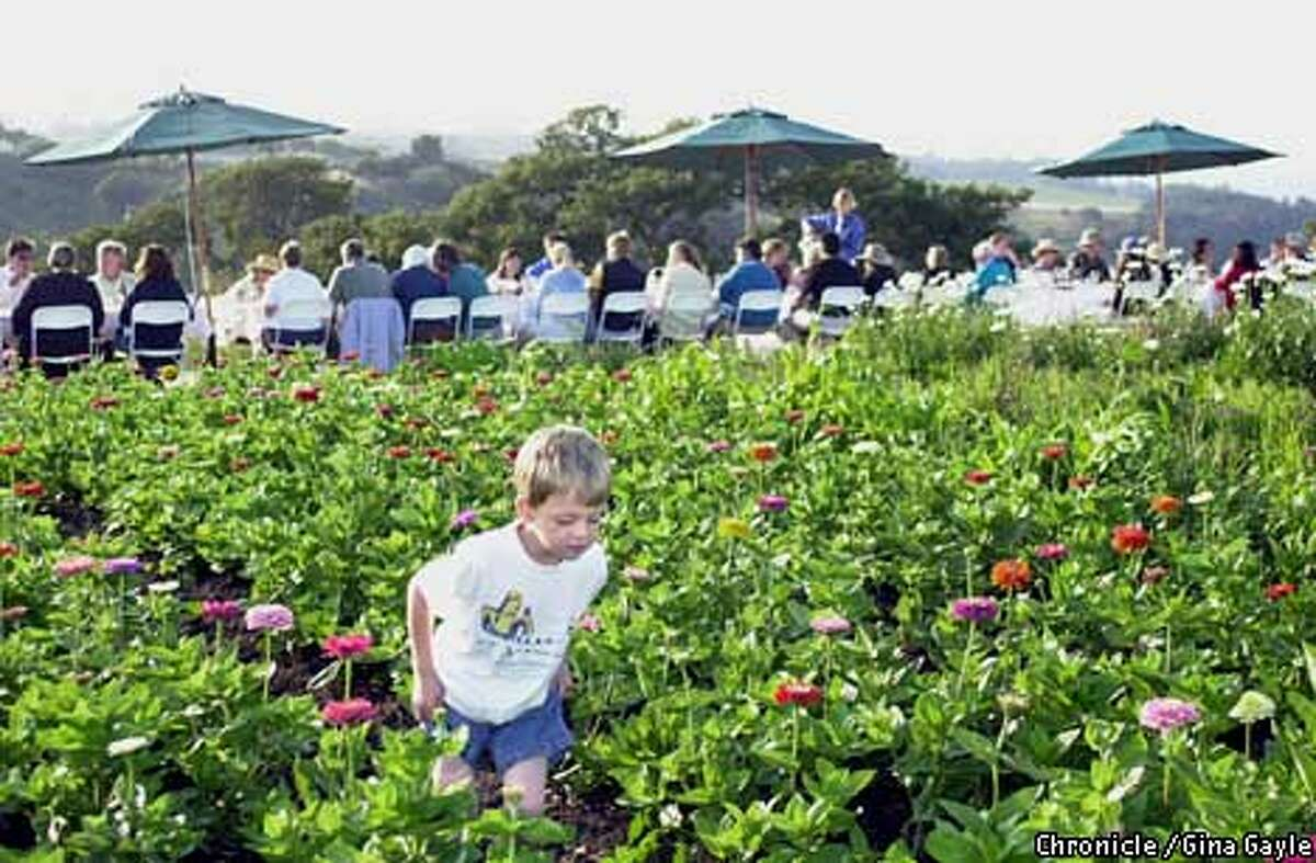 Rowan Santa Cruz, 4, enjoyed the fields of flowers more than the six course meal at Outstanding in the Field farm dinner and tour at High Ground Farm in Watsonville. Photo by Gina Gayle/The SF Chronicle.