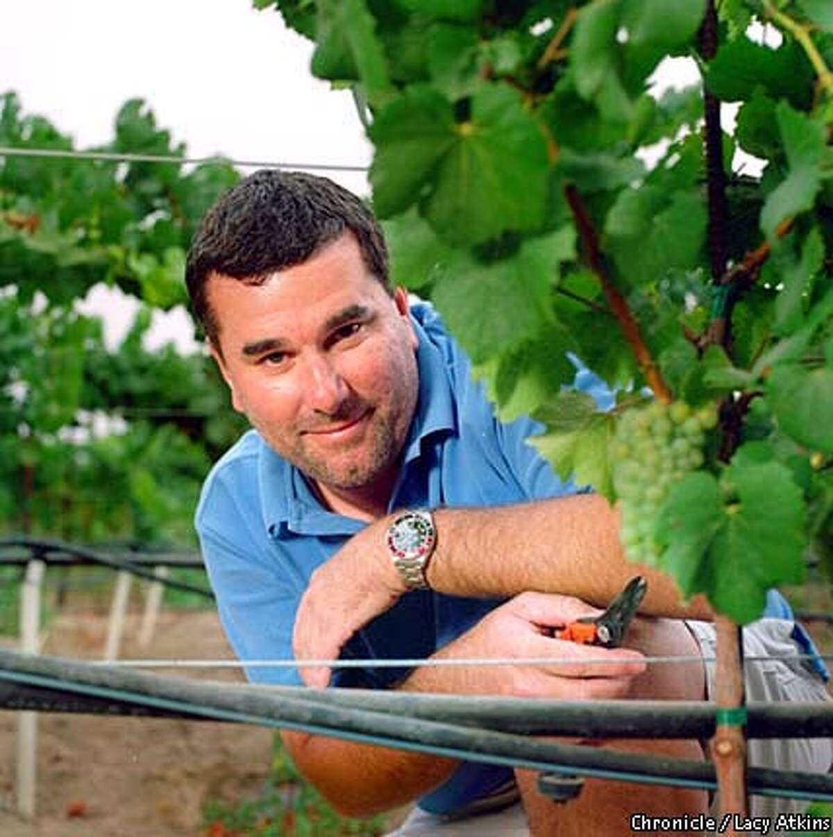 Winemaker Mark Aubert. Chronicle photo by Lacy Atkins