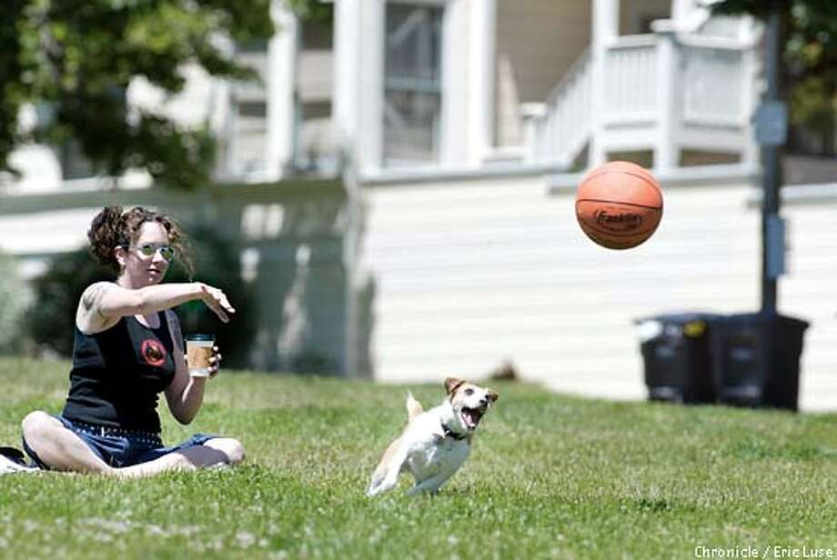All Mia Weening, SF, wanted to do was go to Duboce Park and read her book. All her dog Ratchet wanted to do was play with a basketball and with her snout manuever it it back to Mia at full speed.  BY ERIC LUSE/THE CHRONICLE Photo: ERIC LUSE