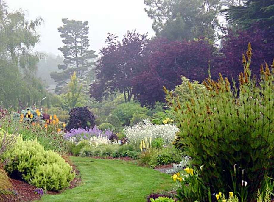 The Perennial Garden welcomes visitors near the entrance.� Many find so much to explore here that they never see the rest of the Gardens! Elegia capensis to the right of the picture  (HANDOUT PHOTO) Photo: HANDOUT