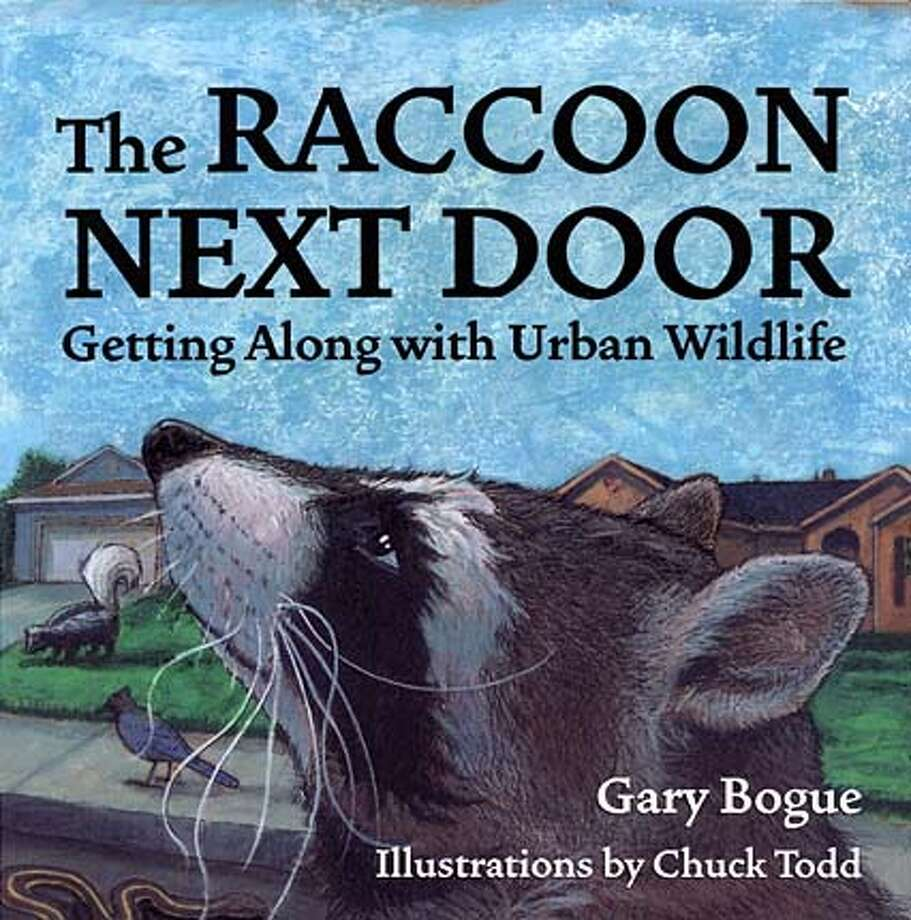 / for: Home The Raccoon Next Door