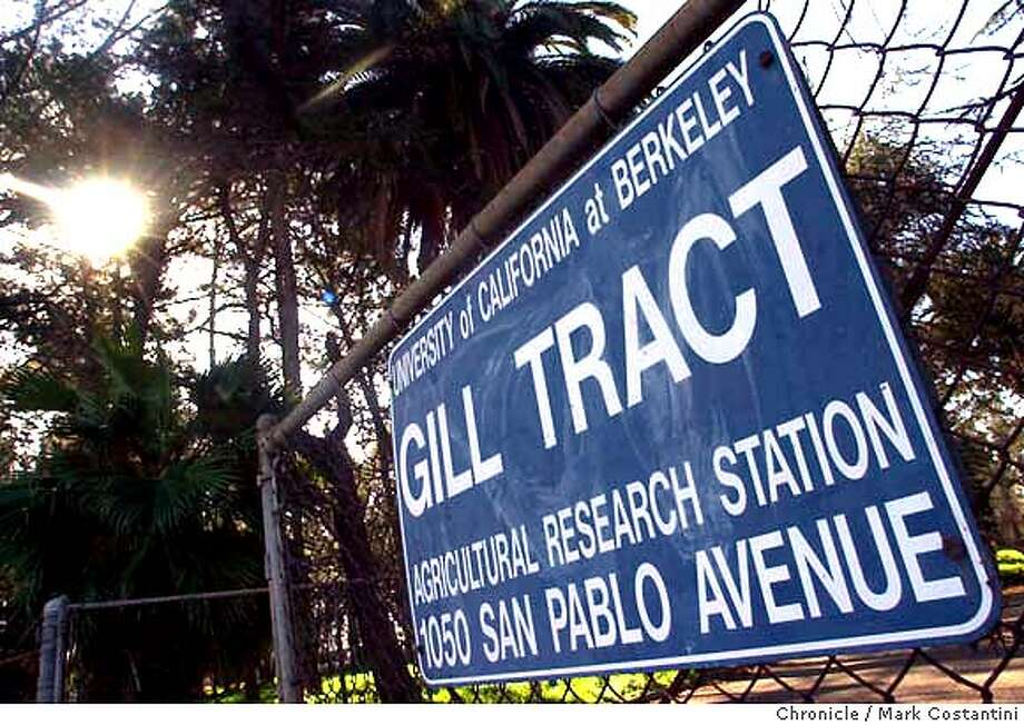 gill_0074.JPG Photo taken on 1/22/04 in Albany. Sign at entrance t farm.  For centerpiece on Friday, Jan. 23. It's about the displacement of a UC Berkeley research farm called the Gill Tract, located in Albany. CHRONICLE PHOTO BY MARK COSTANTINI MANDATORY CREDIT FOR PHOTOG AND SF CHRONICLE/ -MAGS OUT Photo: MARK COSTANTINI