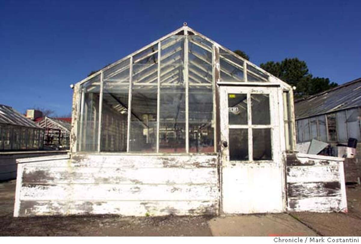 gill_0031.JPG Photo taken on 1/22/04 in Albany. Unused greenhouse on the farm. For centerpiece on Friday, Jan. 23. It's about the displacement of a UC Berkeley research farm called the Gill Tract, located in Albany. CHRONICLE PHOTO BY MARK COSTANTINI MANDATORY CREDIT FOR PHOTOG AND SF CHRONICLE/ -MAGS OUT