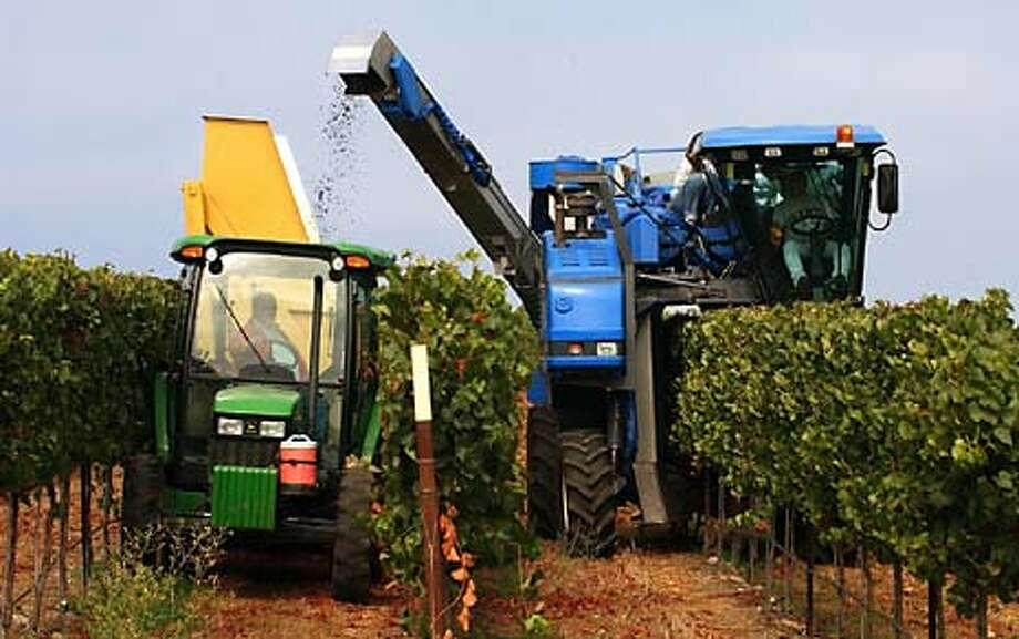 Automated harvesters have replaced hand-picking in Mondavi's vineyards in Soledad (Monterey County). Photo by David Paul Morris, special to the Chronicle